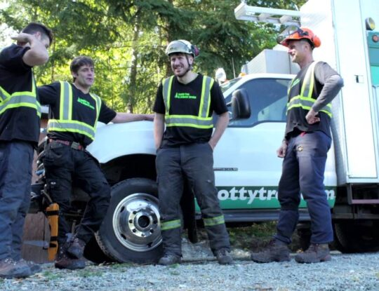 Arborist Consultations-Lake Worth Tree Trimming and Tree Removal Services-We Offer Tree Trimming Services, Tree Removal, Tree Pruning, Tree Cutting, Residential and Commercial Tree Trimming Services, Storm Damage, Emergency Tree Removal, Land Clearing, Tree Companies, Tree Care Service, Stump Grinding, and we're the Best Tree Trimming Company Near You Guaranteed!