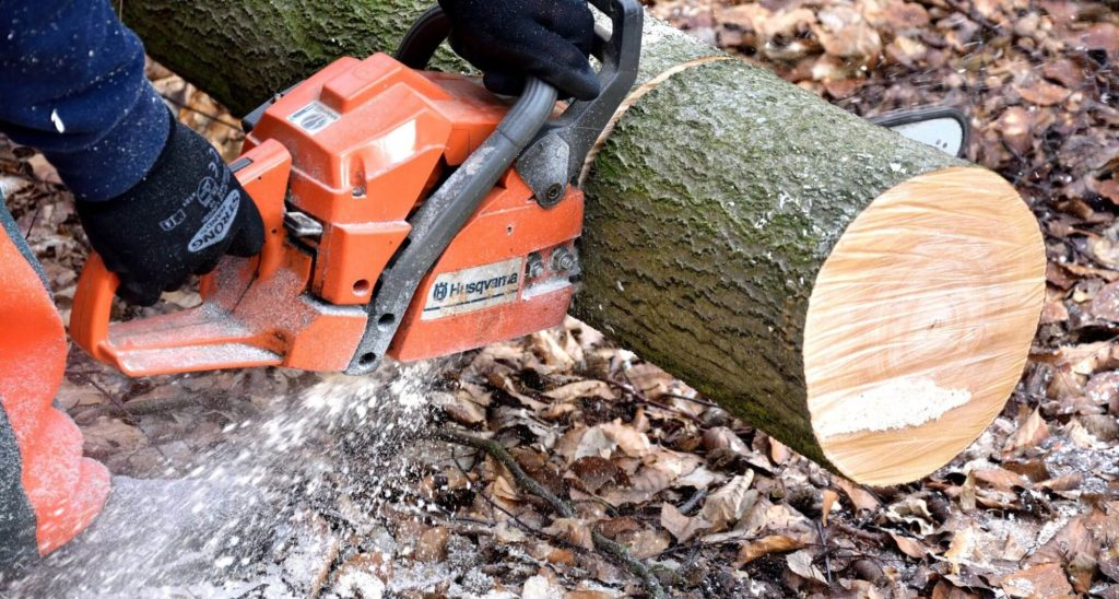 Lake Worth Tree Trimming and Tree Removal Services Main Header-We Offer Tree Trimming Services, Tree Removal, Tree Pruning, Tree Cutting, Residential and Commercial Tree Trimming Services, Storm Damage, Emergency Tree Removal, Land Clearing, Tree Companies, Tree Care Service, Stump Grinding, and we're the Best Tree Trimming Company Near You Guaranteed!
